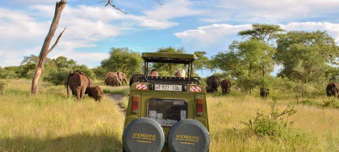Tanzania safari och resor med Andersons