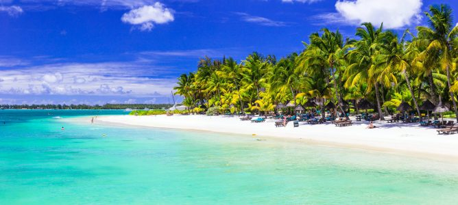 Strand med palmer på Mauritius